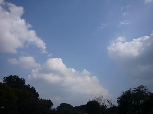 多摩霊園の空.jpg
