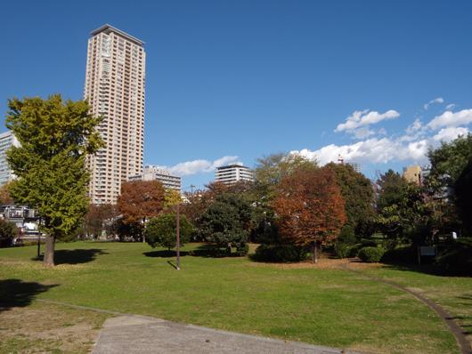 青一公園.jpg