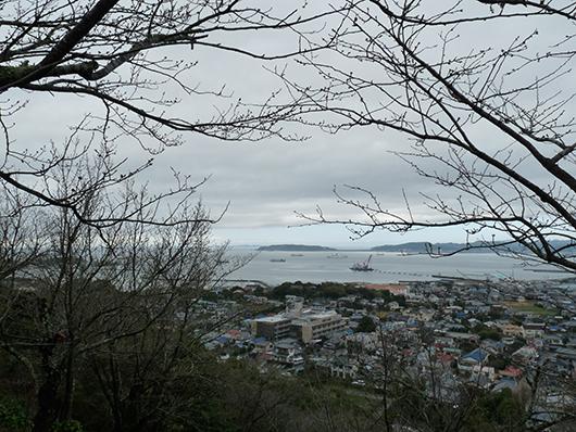 館山の山から海.jpg
